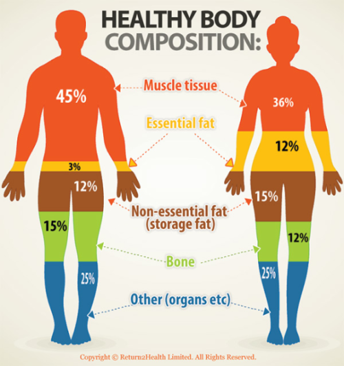 difference between body fat percentage bmi and weight