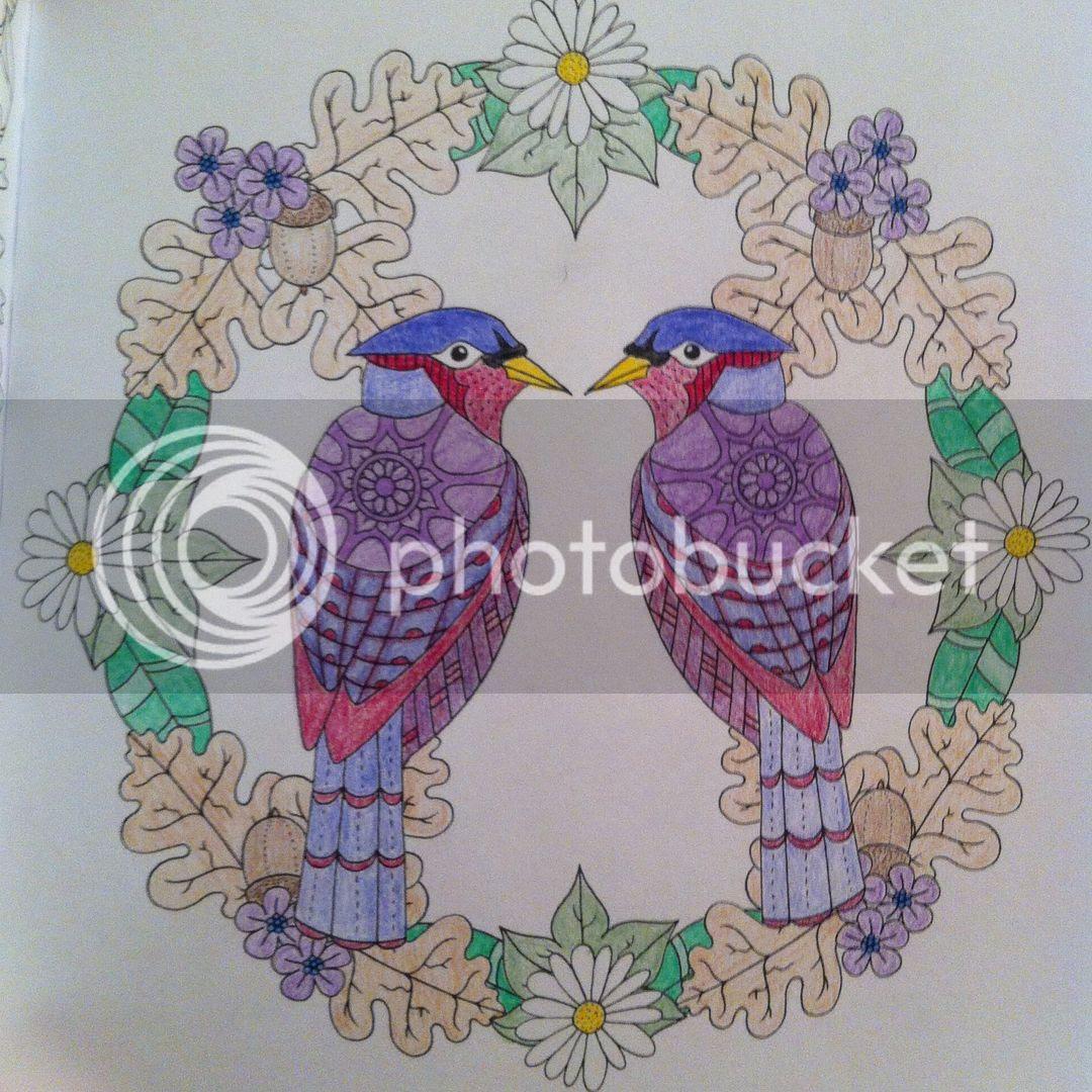 Colour Me Mindful Birds - Coloured
