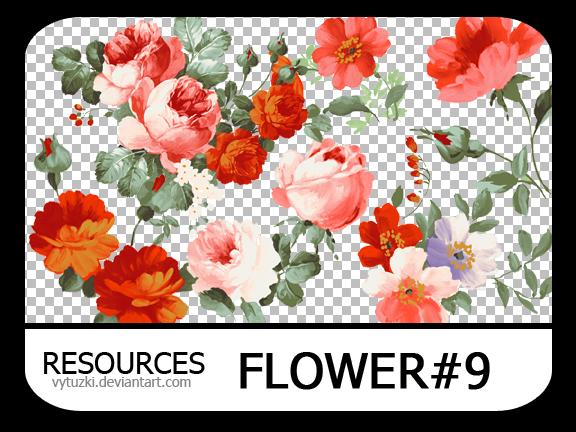 PNG pack #13 - Flower#9 - Vy Tuzki by VyTuzki on DeviantArt