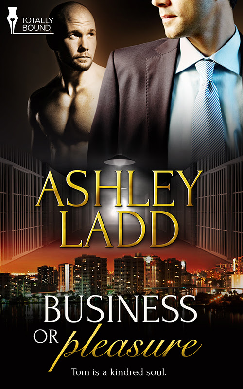 Business Pleasure - Book Cover