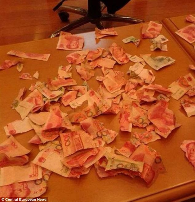 Shreds: A toddler, 4, who had a habit of tearing up old books found his family's life savings and ripped them to shreds, pictured