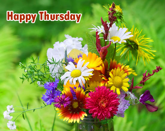 311 Good Morning Thursday Images Wishes Greetings Hd Download