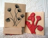 Queen Anne's Lace rubber stamp from oldislandstamps