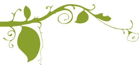 bunga hijau daun gambar vektor gratis  pixabay