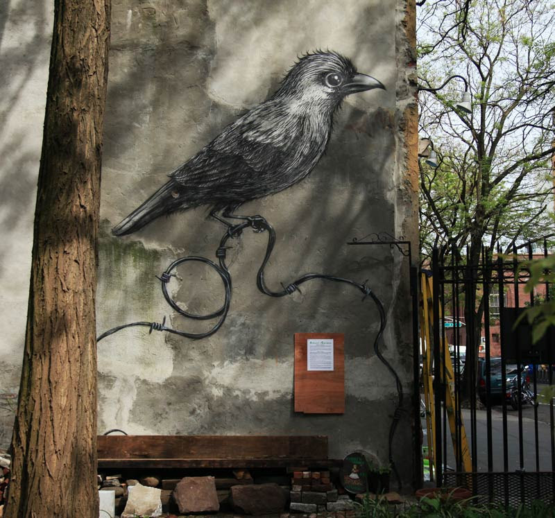 brooklyn-street-art-roa-jaime-rojo-manhattan-12-13-web-5