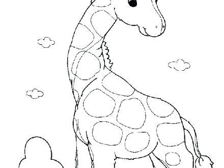 giraffe head drawing at getdrawings  free download