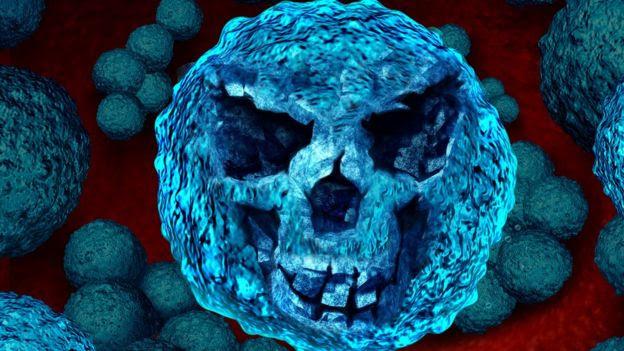 Superbactéria