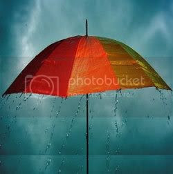 rain Pictures, Images and Photos