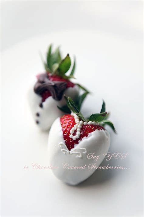 Sugar Coated Kitchen   Chocolate Covered Strawberries