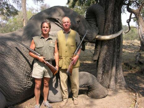 rey mata elefante botswana