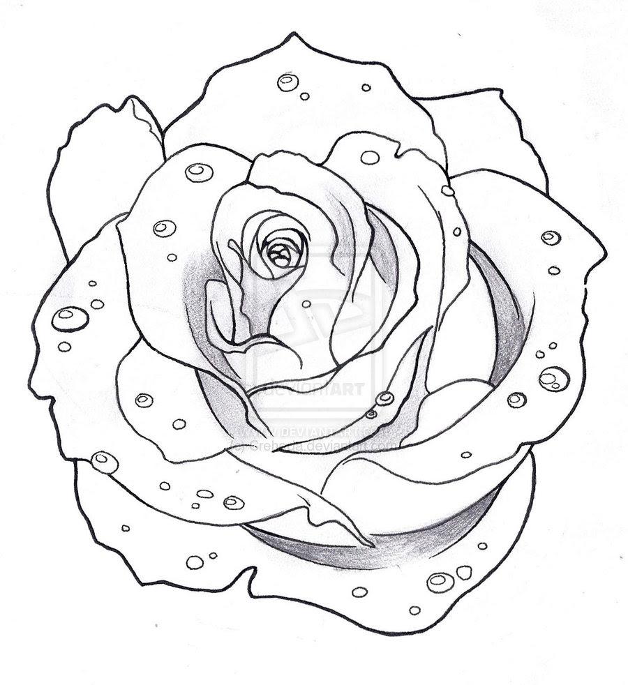 Wonderful Outline Rose Tattoo Design