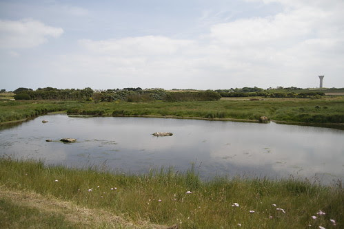 Pond in middle of a village