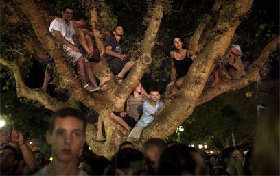 Tel Aviv.  Dando manifestantes Tree (Foto: AFP)