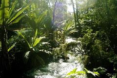 Ruiz National Park, Uruapan