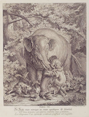 elephant strangling fox with trunk