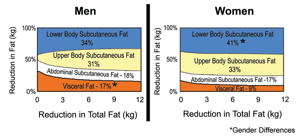 body fat percentage pictures men