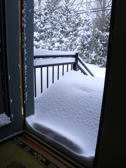 Looking Out The Front Door