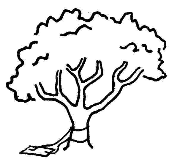 tree swing - engineering