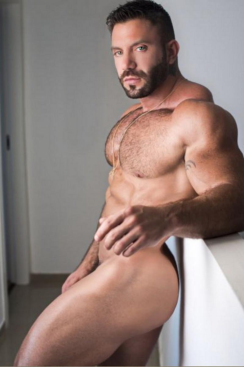 AVI dar Gay porno hviezda