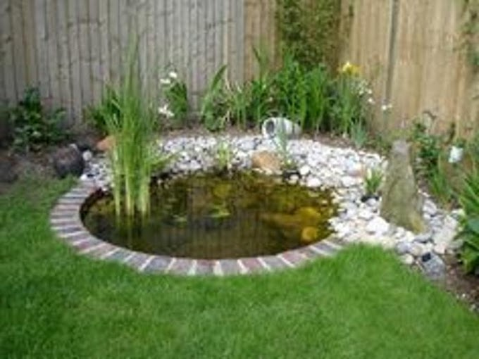 10 Easy Pond Plans - Projects