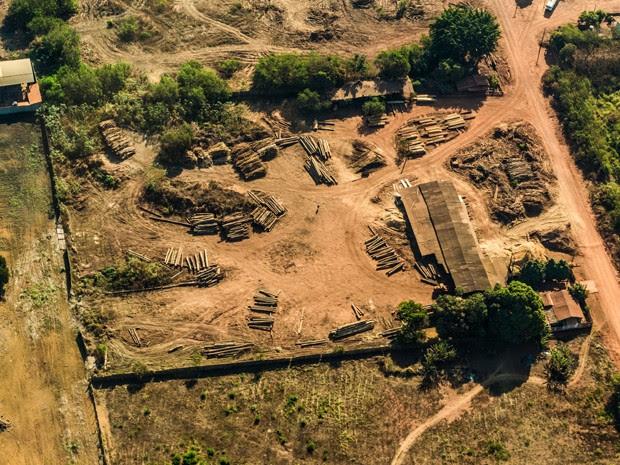 Clareiras são abertas no meio da mata em Alto Turiaçu (MA) (Foto: Fábio Nascimento / Greenpeace)