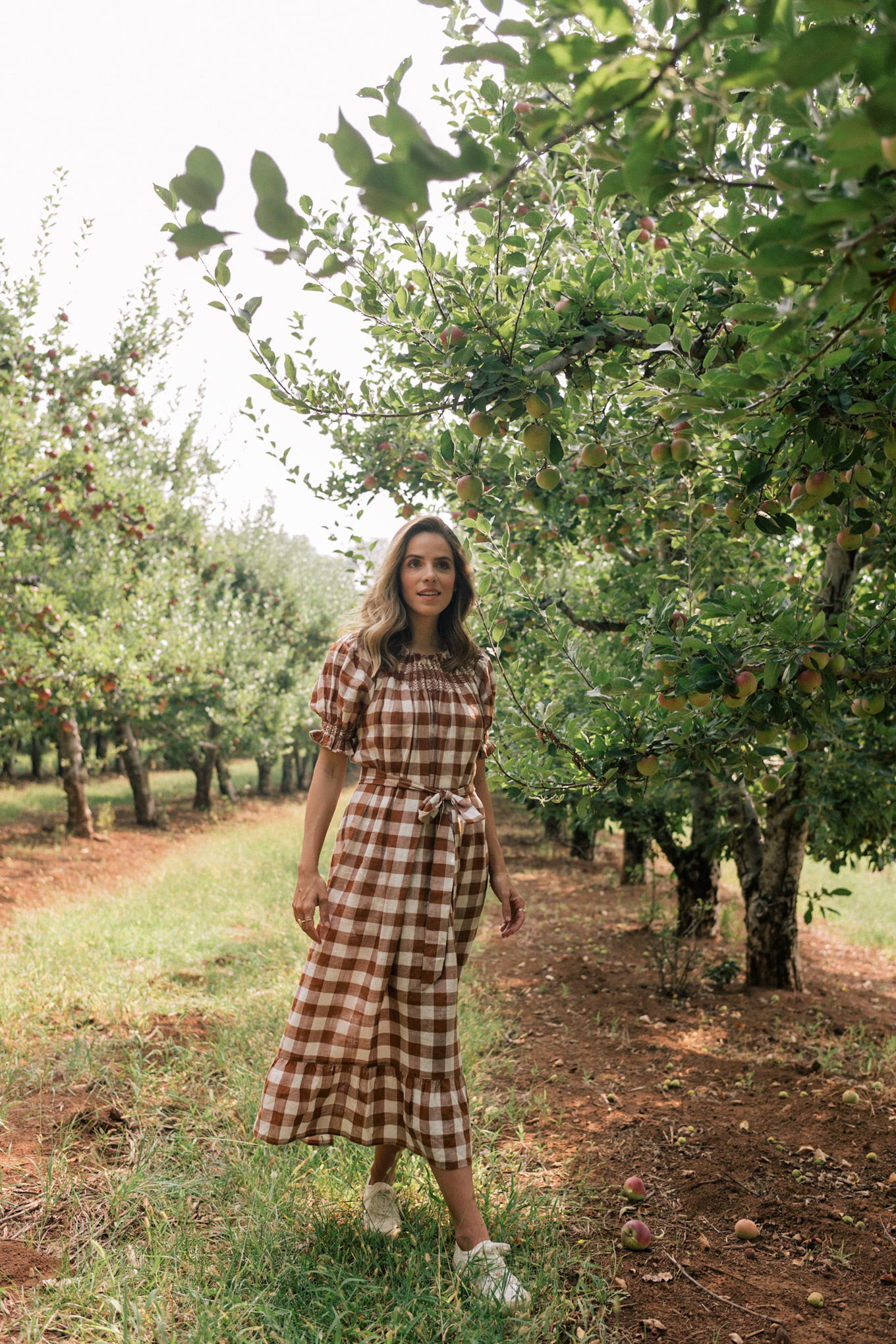 fall brown white gingham dress