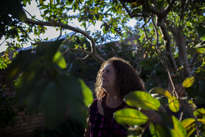Antônia Mello, da ONG Xingu Vivo, sob uma goiabeira, no quintal da casa onde viveu 35 anos e criou 5 filhos
