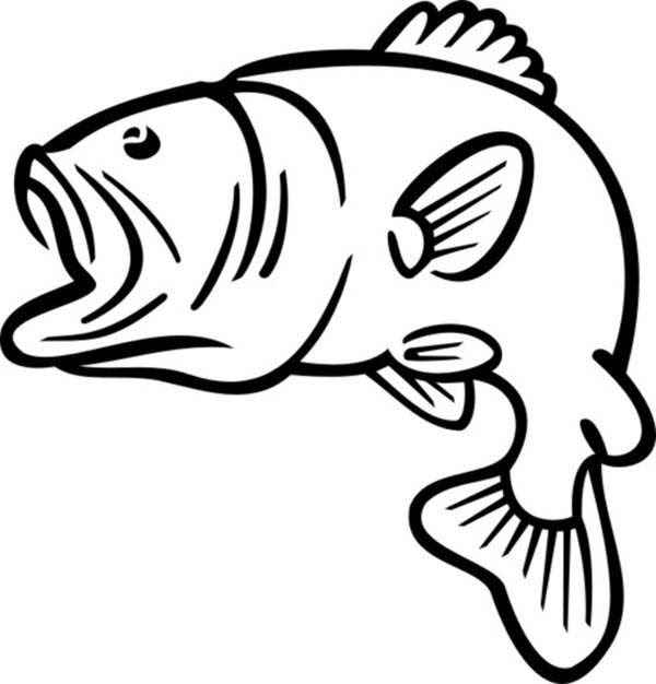 Bass Fish Outline Coloring Pages   Best Place to Color