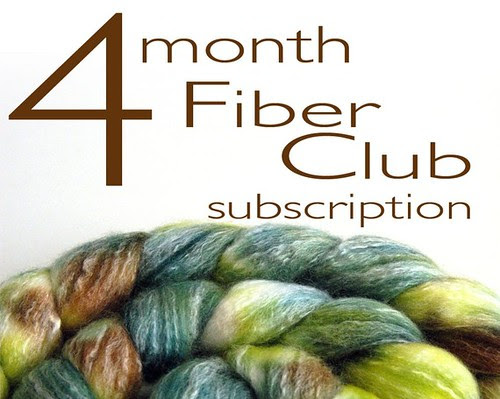 fiber subscription