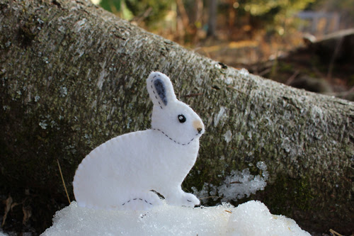 Snowshoe hare pattern
