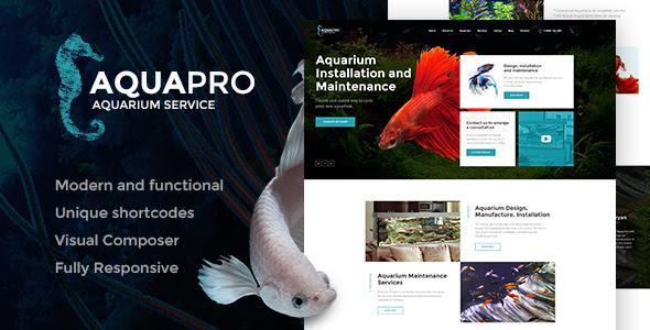 60 Gambar Design Aquarium Online HD Terbaik Download Gratis