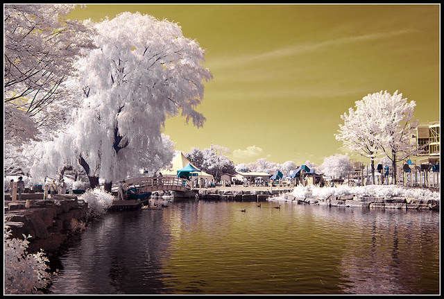 Ontario Place in False Colours of Infrared