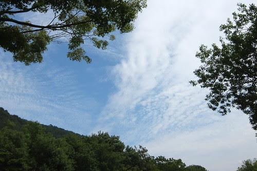 福島で見た空