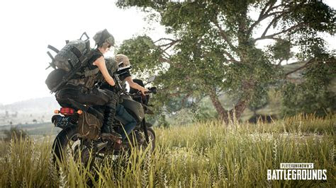 pubg wallpapers  hd  images