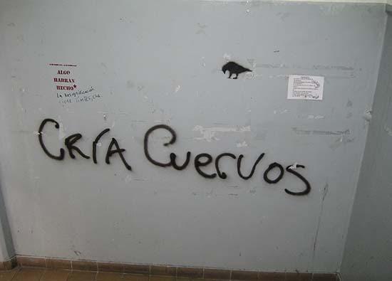 """Argentine, Buenos Aires, university, enigmatic/hieroglyphic graffiti: crow with inscription """"Cría cuervos"""""""
