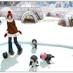 My polar getaway - Penguins