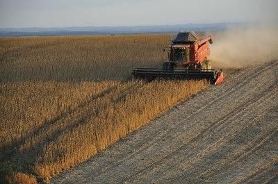 Foto ilustrativa mostra uma plantação de soja e uma colheitadeira