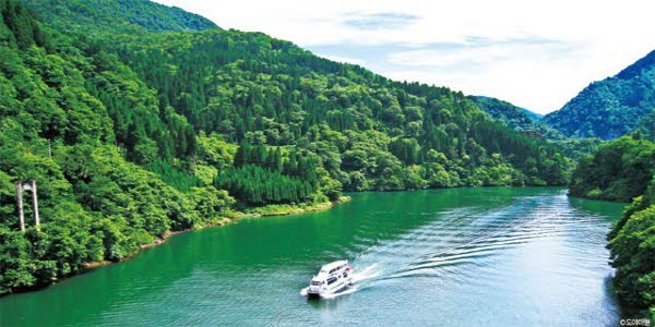 도야마현 쇼강 협곡의 유람선. 고마키댐에서 오마키 온천 사이를 운행한다. 산자락에 줄지어 선 삼나무들이 무척 아름답다.