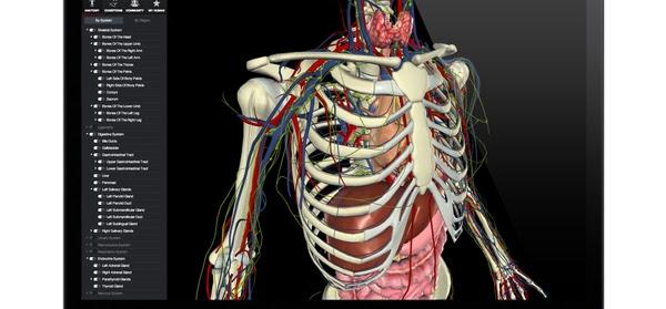 Temas De Medicina: Software Aplicada a la Medicina