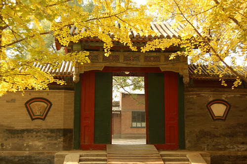 Autumn in the Summer Palace