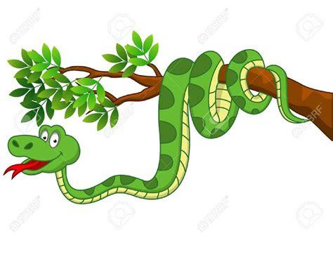 stock vector cartoon snakes snake drawing jungle