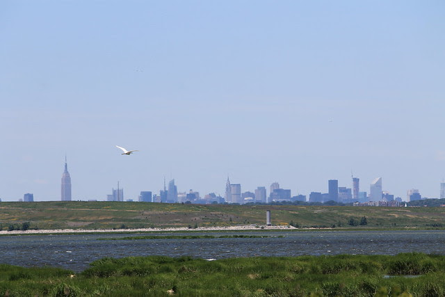 Jamaica Bay Wildlife Refuge