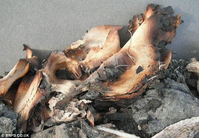 Burnt out: The remains of a scorched parachute