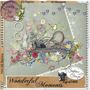 wonderfulmoments_