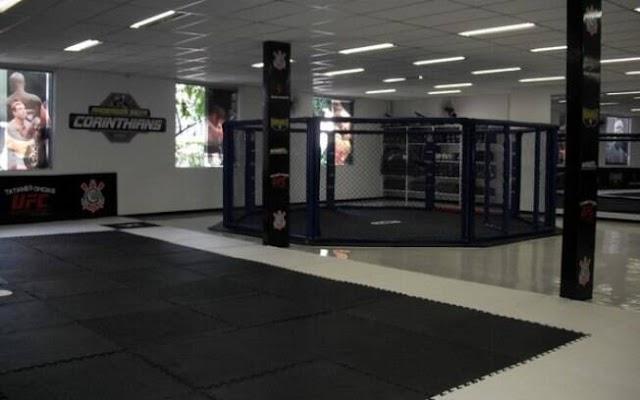 Cd Online de Treinamento em MMA