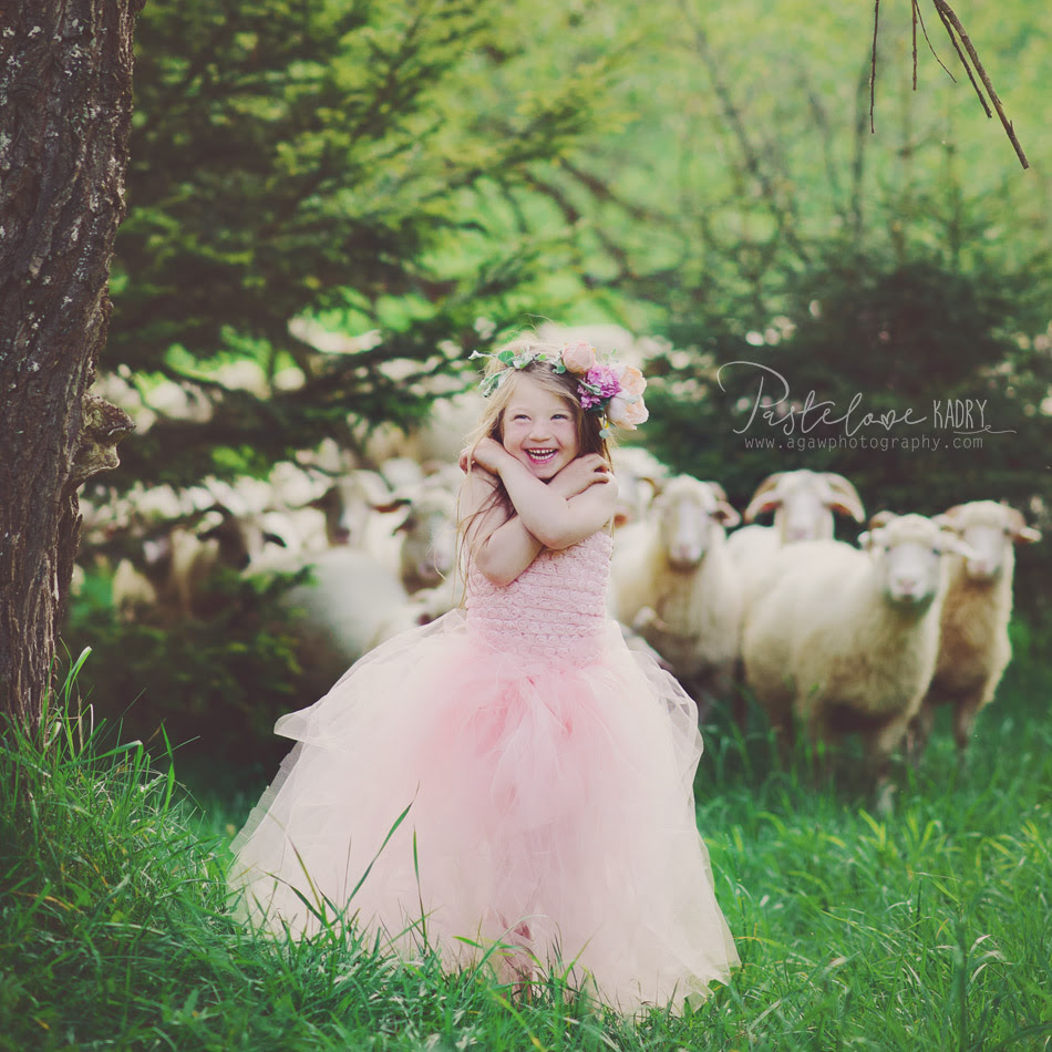 dziecko i owce