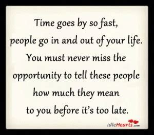 Life Passes Too Fast Quotes