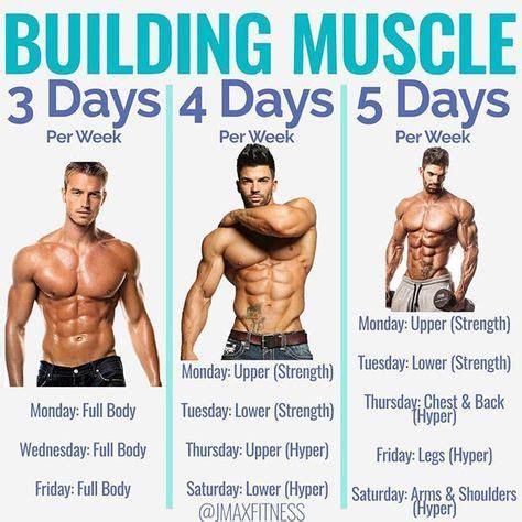 times  week   workout  legs