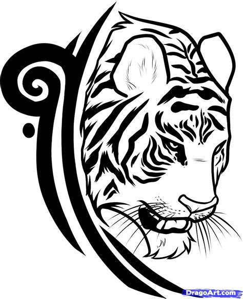 draw  tiger tattoo design tiger tattoo design