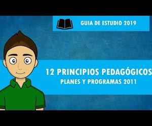 ver vídeo 12 PRINCIPIOS PEDAGÓGICOS planes y programas 2011